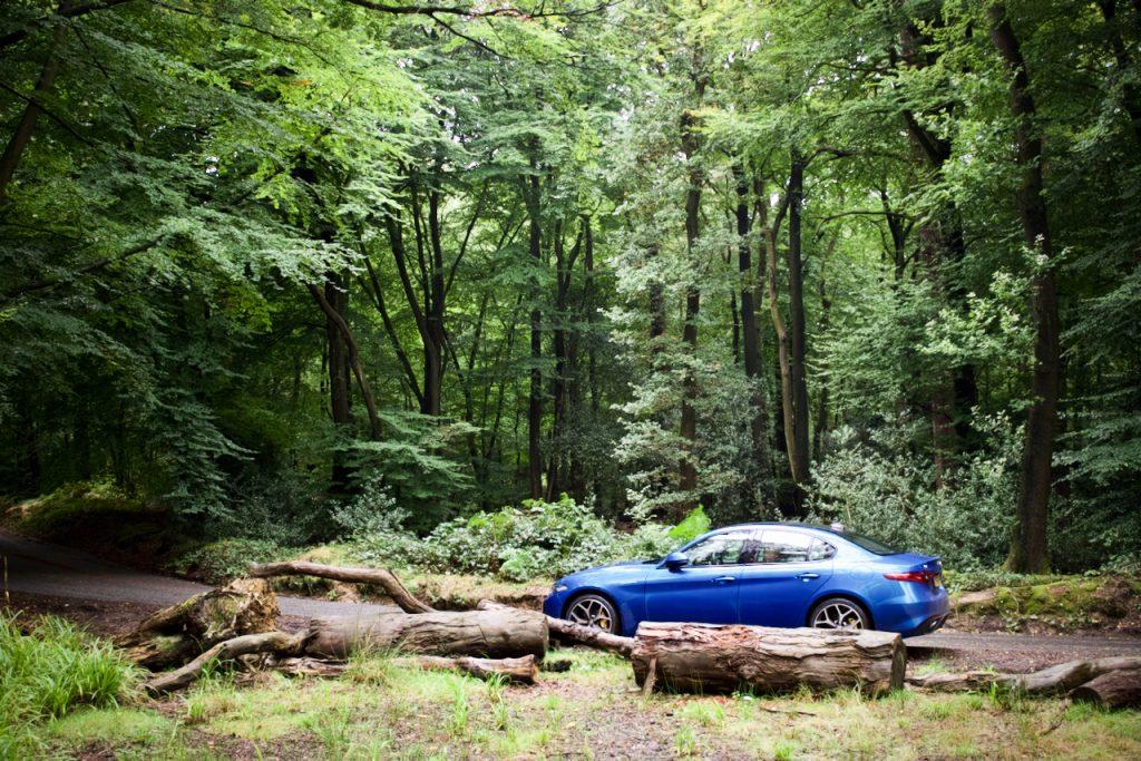 Alfa Romeo Giulia in a forest